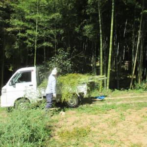 自然や風や大地を感じる大地の再生ワークショップ~inフラワーレのお庭造り~