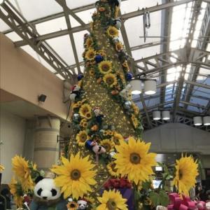 アトレ上野のクリスマスツリー