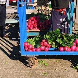 滋賀・高島へしこツアーその7 泰山寺の収穫祭&zund耕園の無農薬野菜☆