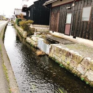 滋賀・高島へしこツアーその9 川端の「上原酒造」