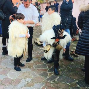 ガヴォイ サンタントニオの祭り