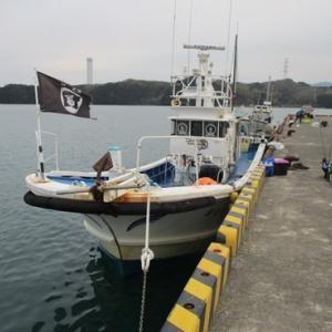 徳島県伊島沖 カワハギハンターたちの熱き戦い