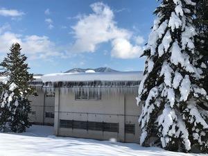 信濃町の雪