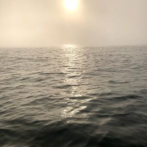 霧霧まいよ♪