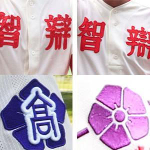 聖地、甲子園で映える「漢字2文字」ユニフォームの実力