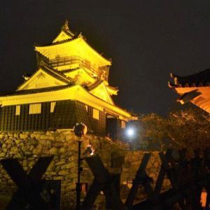 世界アルツハイマーデーのPRに浜松城の照明がオレンジ色ライトアップ