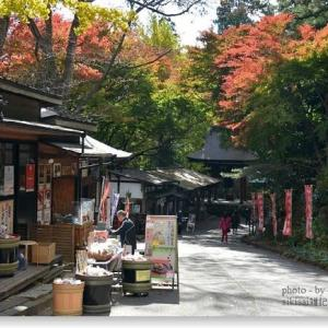 観音寺と紅黄葉