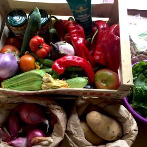 フィレンツェで有機野菜を食べるには