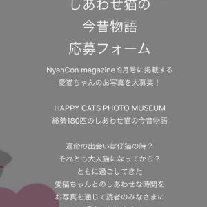 素敵企画「しあわせ猫の今昔物語」