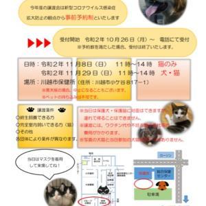 事前予約開始!→ 保護猫譲渡会 IN 川越市保健所と彩の国譲渡会のお知らせ