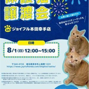 8月1日(日)はジョイフル本田幸手店で譲渡会です!