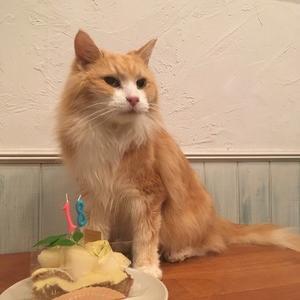 レオが18歳になりました!