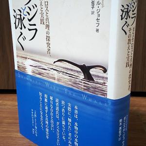【新刊】クジラと泳ぐ ダスカロスと真理の探究者、その教えと実践
