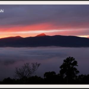 昆布岳の山麓に発生した雲海