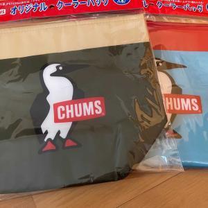 十六茶のおまけのCHUMSクーラーバッグ