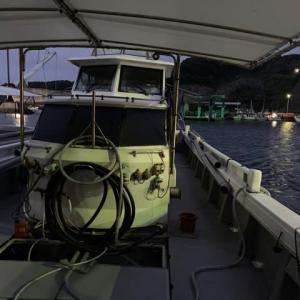 2020 平戸早福船アラ釣り開幕戦