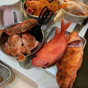 いろんな魚を捌いてみたら