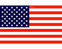 【世論調査】アメリカ人の過半数が米軍による暴動鎮圧を支持