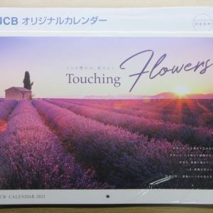 【JAL】「JCB オリジナルカレンダー 2021」 到着