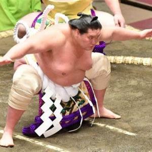 相撲は日本の国技