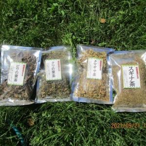 シャインマスカット/4種混合健康茶/朽ちたデッキ板/お月見のこころ