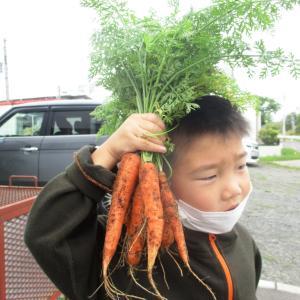 野菜を食べて愛し合おう!