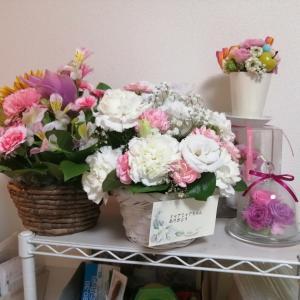 ミャアミャアにお花を頂きました