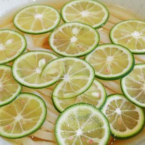 今年も酢橘ひやひやの季節がやってきました! Udon Kyutaro @ 大阪市中央区久太郎町 200605