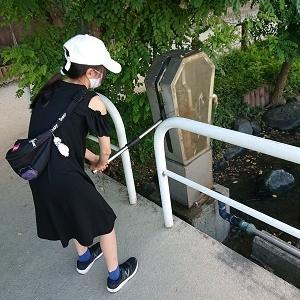 隅田川テラスのカニ