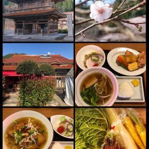 龍文寺へ、その後いなか屋でランチ(^_^)