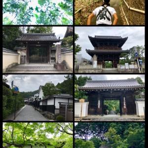やっぱり京都⑤