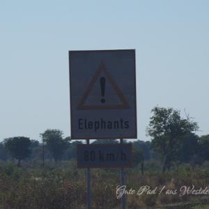 2018 ボツワナとの国境に近いナムシャシャ・ロッジへ