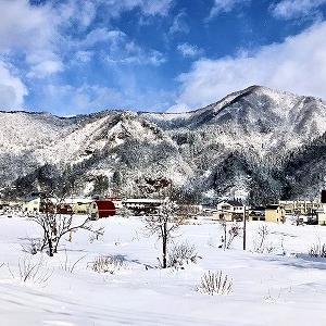 3577 【調味料類45】雪の少ない豪雪の街で「にしんみそ」を・・越後湯沢