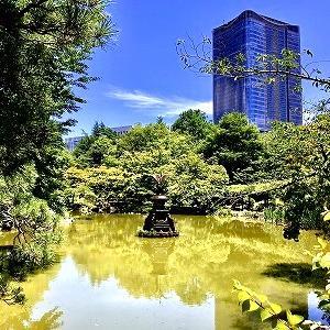 3664 【やきそば402】梅雨晴れの日比谷公園で「梅のりロメスパ」を