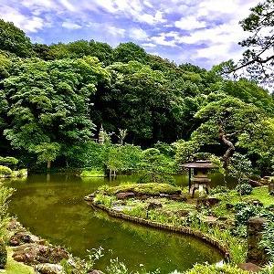3674 【野菜果物122】梅雨明けを祈る細川庭園と「青みかん」・・関口台