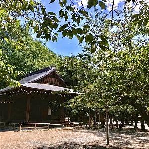 3704 【スイーツ323】残暑の?國神社で「駐車場の濃厚ソフト」を・・九段上