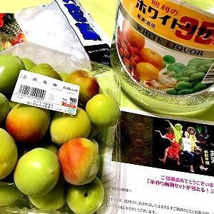 3866 【野菜果物133】肥後花菖蒲の咲く細川庭園と「初めての梅酒作り」