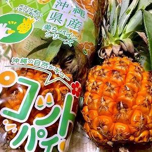 3889 【野菜果物135】接種明けの神田川沿いと「沖縄ポコットパイン」・・関口台