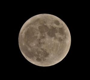 10月の満月「狩人の月(Hunter's Moon)が東方の空に昇りはじめました(2021/10/20)。