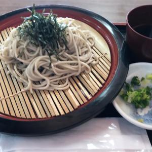 前菜もなしに苔寺にガッつくほど、わたしは大人ではない。