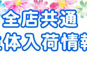 2月6日 ~ブログの移行~