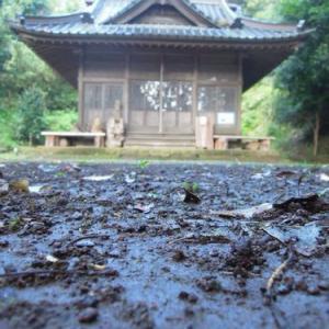 お日様が足元を照らしてくれました! 三嶋神社にて。。。