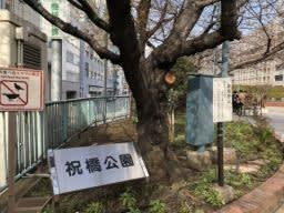大江戸歴史散歩(2019-9-② (築地川本川の新富町・銀座界隈をを歩く)-3
