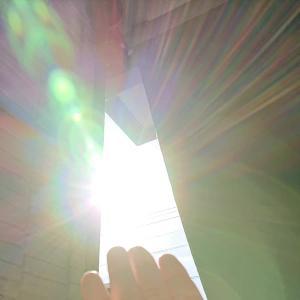 今朝の太陽の光☆彡