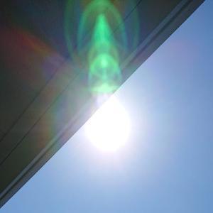 今日は「夏至の日」・光