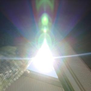 今日の太陽の光★2021/8/5