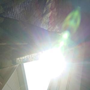 今日の太陽の光°˖☆◝(⁰▿⁰)◜☆˖°