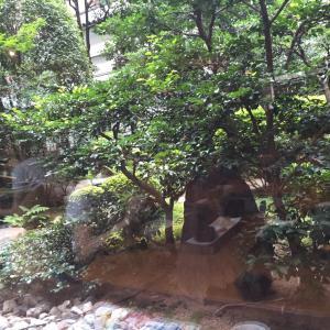 9月18日 雨の1日 京都 着物レンタル 夢京都