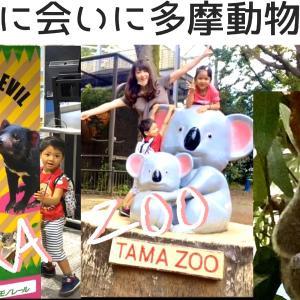 多摩動物公園に行ってきた【シングルマザーの誕生日の過ごし方】