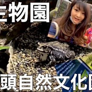 【爬虫類両生類を見に行こう】井の頭自然文化園【水生物園】シングルマザーの休日